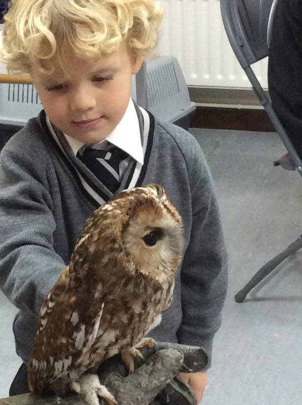 Pre-Prep Leatherhead Reception enjoy a visit from some owls!