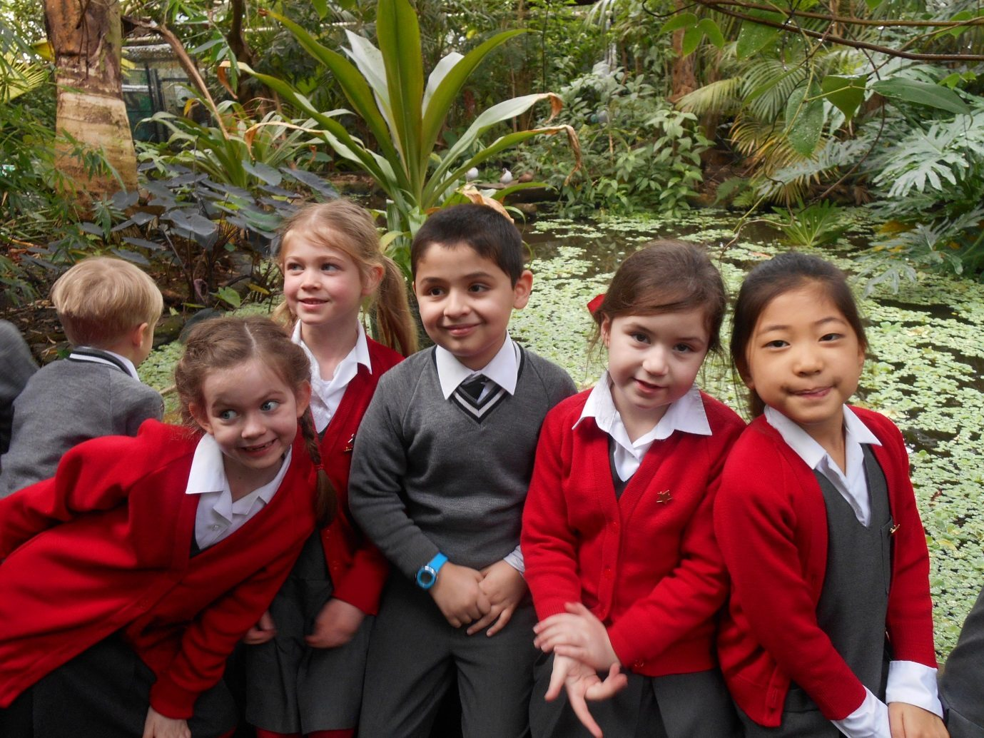 Downsend pupils explore the rainforest